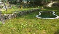 India's first cryptogamic garden inaugurated in Dehradun