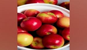 Adani Agri Fresh procures 2,500 tonnes of apples from farmers