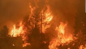 US: Over 1,600 firefighters battle new wildfire in northern California