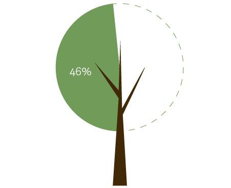 46% trees ICD