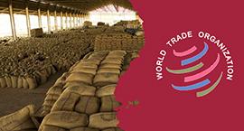 WTO_NAIROBI_NON HERO_SHOUMIK