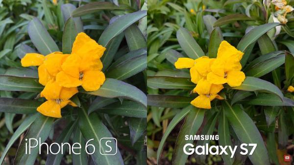s7 - iphone camera- embed- softpedia.jpg