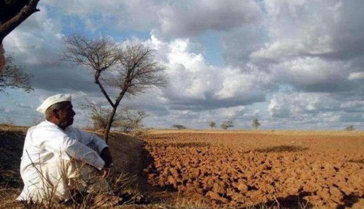 Maharashtra farmer/ PTI