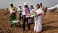 Mamata hands over land to Singur farmers, sows the first seeds