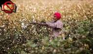 Poorest in Rajasthan beg banks for their own money, farmers worst hit
