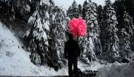 In Pictures: Shimla sees snowfall as coldwave grips north India